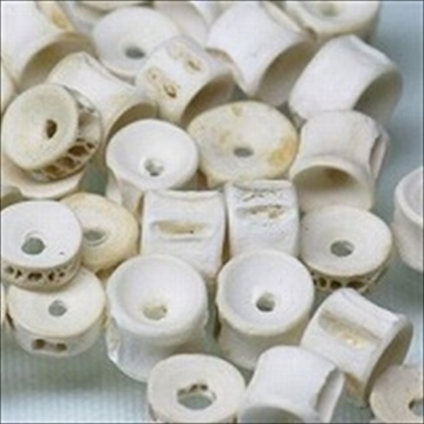 インドネシアの魚の骨です。骨髄部分の穴をそのまま使った小型のフィッシュボーンビーズです。